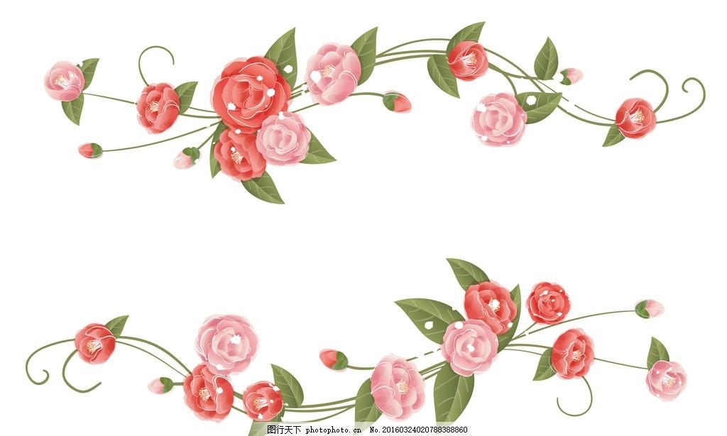 玫瑰 图片下载 玫瑰花 手绘玫瑰 玫瑰花藤 玫瑰边框 玫瑰花纹 精美