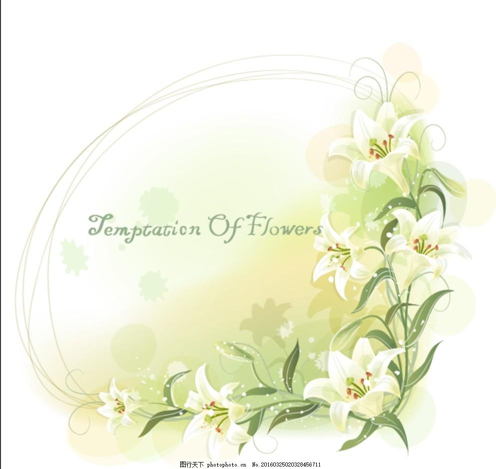 百合花 花边 花框 椭圆 百合 边框 插画 淡雅 清新 浪漫 唯美 花朵