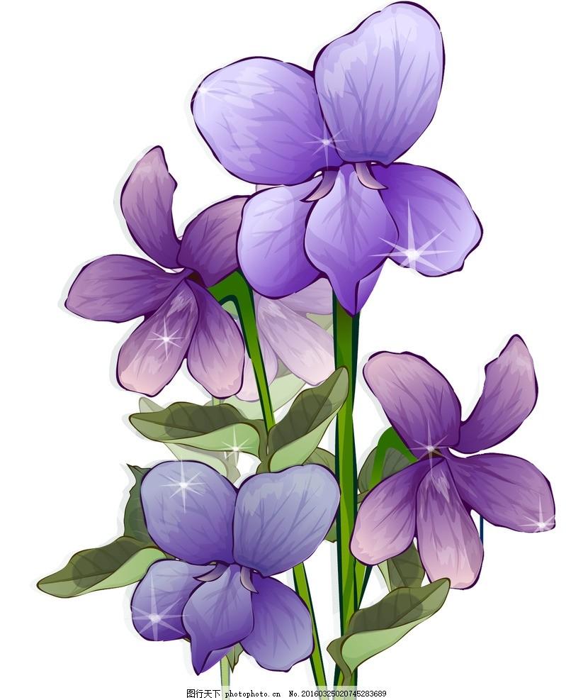 紫罗兰 模版下载 紫色 手绘紫罗兰 紫罗兰花纹 精美花纹 紫罗兰移门