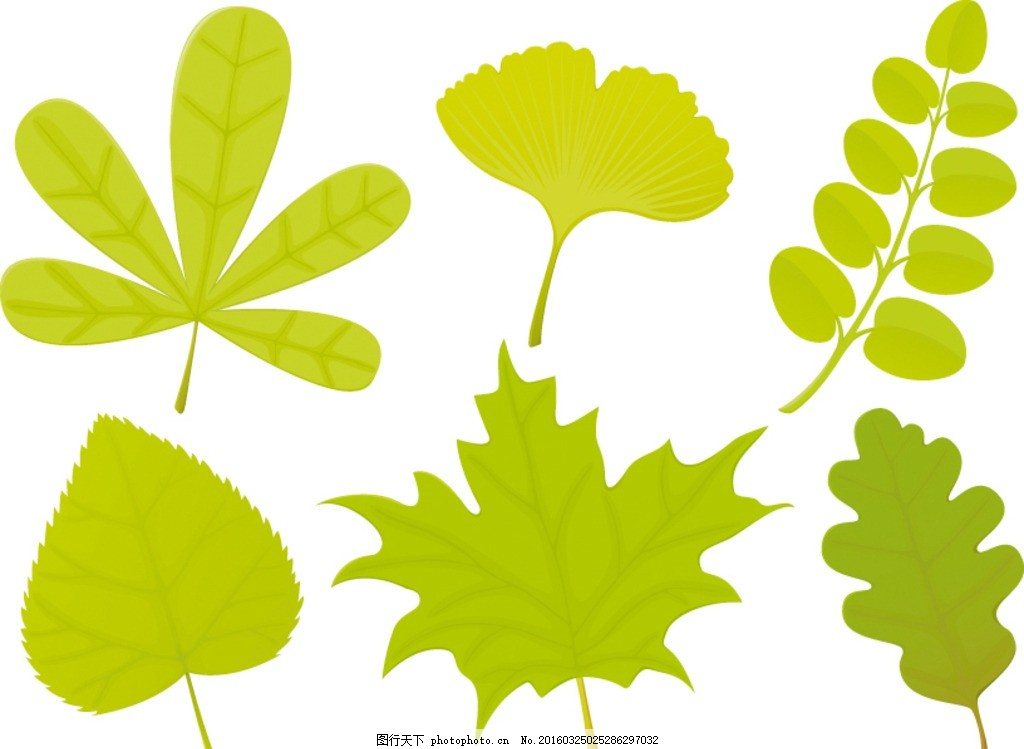 多款树叶,树木 绿叶 绿植 绿树 手绘树木 树木贴图-图