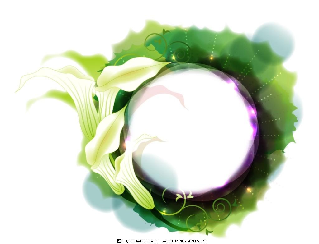 圆形边框 马蹄莲 植物 插画 手绘 插图 相框 装饰画 花边 花纹