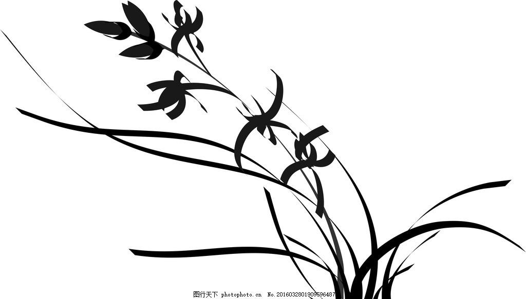 兰花 矢量图 版绘 手绘