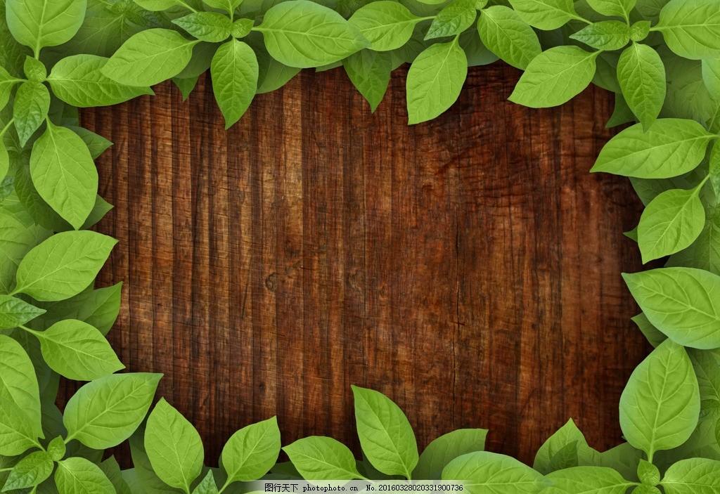 底纹 树叶 木质 木头 自然