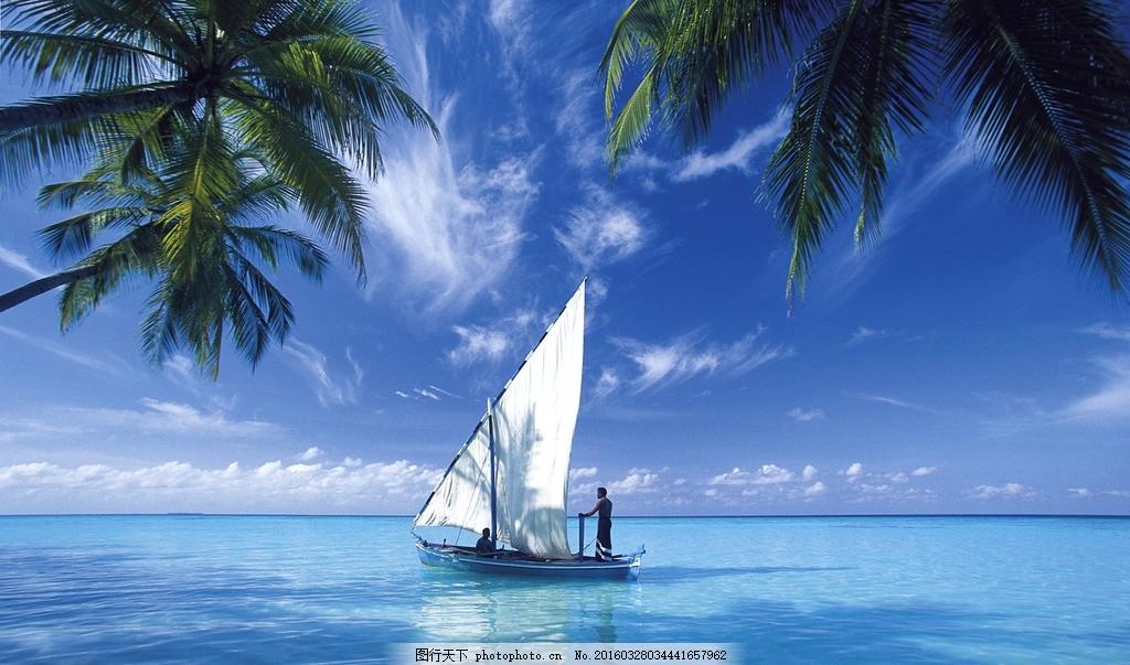 海边椰子帆船 摄影 风景 素材 照片 景色 海边 帆船 摄影 自然景观