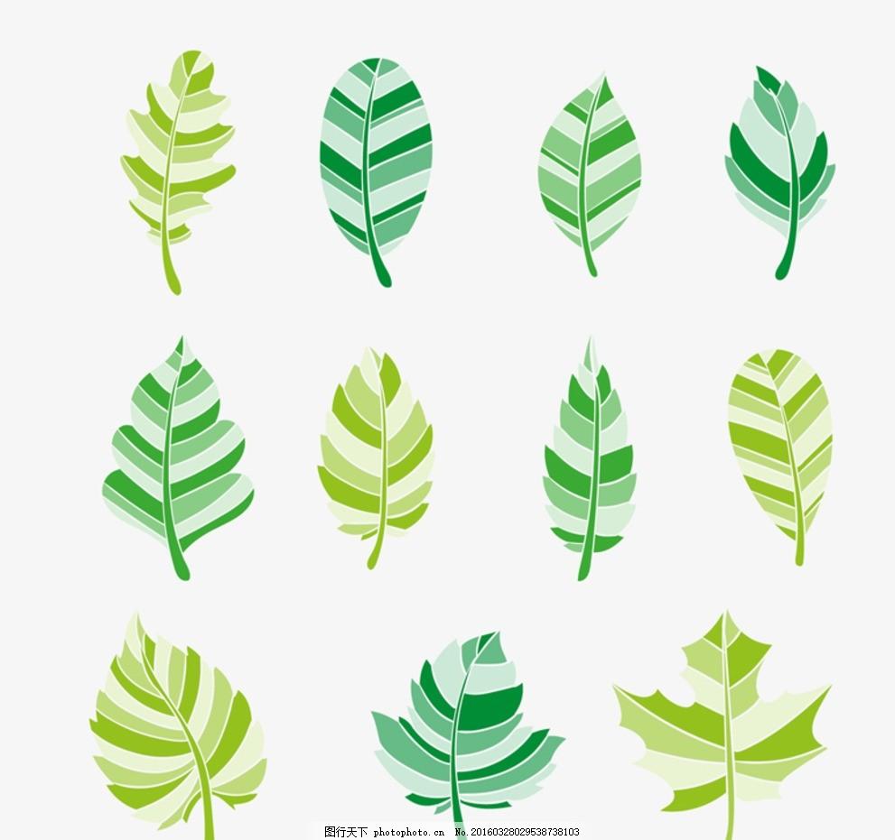 绿色树叶矢量 素材下载 枫叶 榆树叶 杨树叶 梧桐树叶 树叶 槐树叶