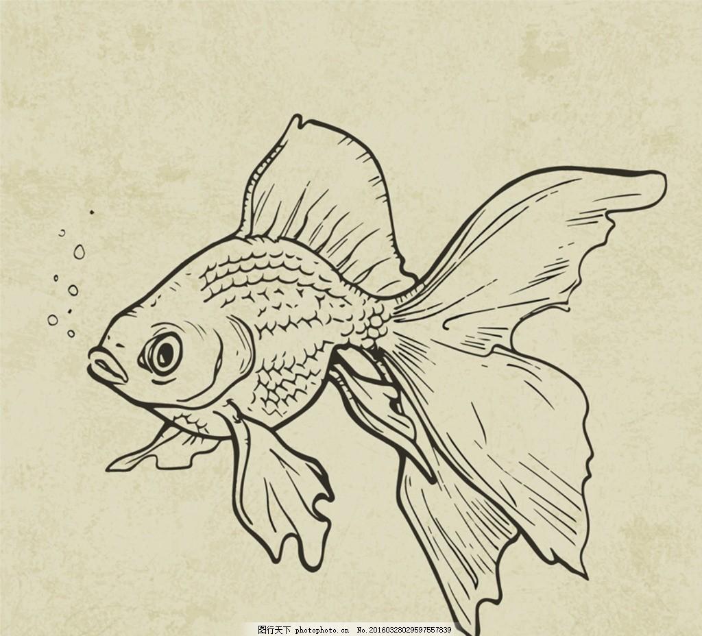 金鱼 手绘金鱼 绘画 白描 线描 国画 轮廓 印章 书法 装裱