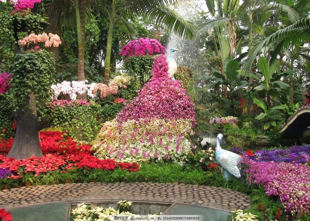 温室景观 植物园温室 花房 温室 园林景观 热带植物 园林摄影 绿化