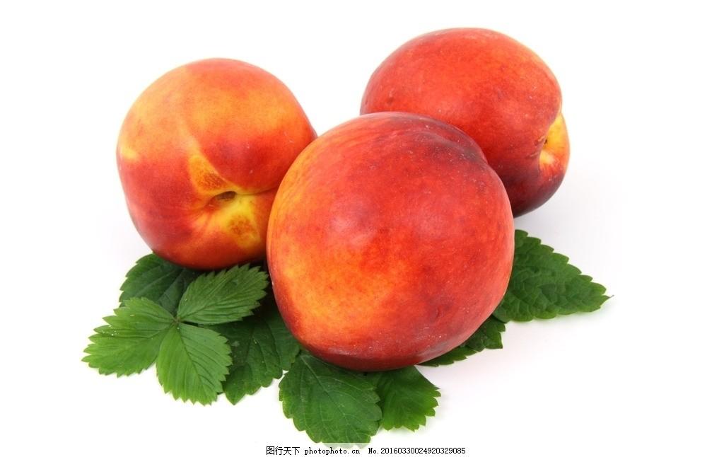 三只桃子 红色油桃 红色水果 有机水果 新鲜成熟果实 叶子 绿色红果