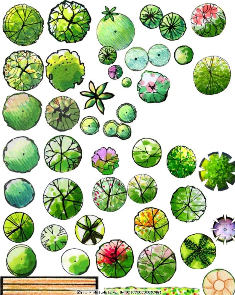 手绘园林绿化树木平面图素材